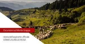 Escursione sul Monte Grappa: Il monte Pertica, storia dell'aspirante ufficiale Ermes Aurelio Rosa